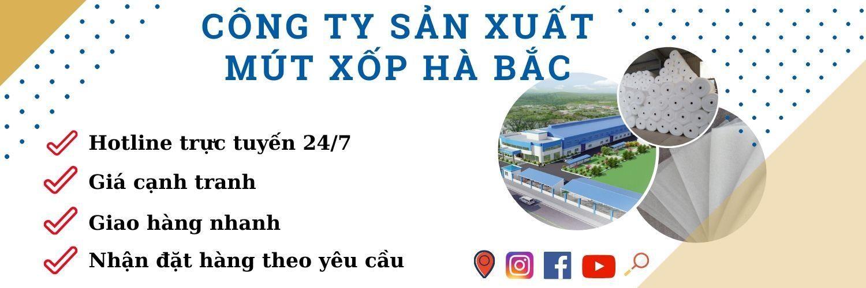 Công ty sản xuất mút xốp tai Việt Nam